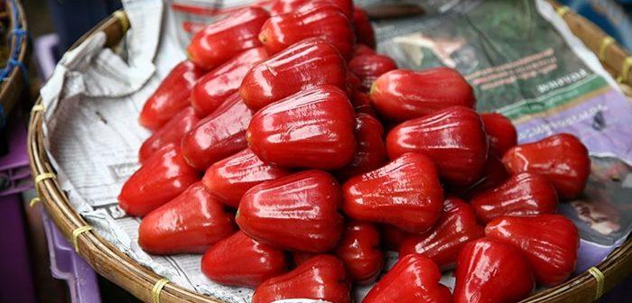 Bà bầu có nên ăn quả roi không?