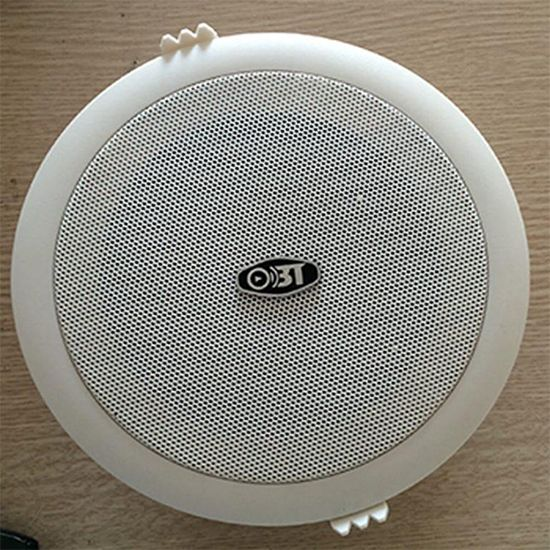 Loa âm trần OBT - 605