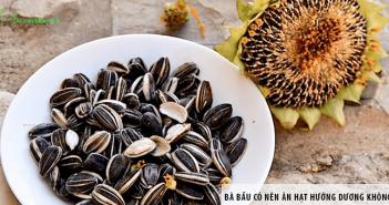 Bà bầu có nên ăn hạt hướng dương không?